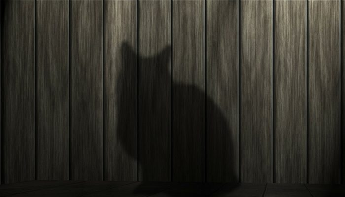 nekustamais īpašums neizrādās kaķis maisā