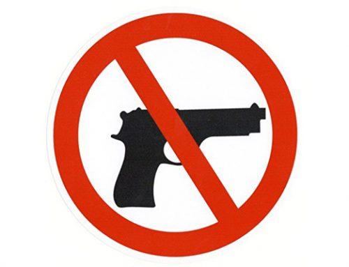 [ 342 ] – Uzturlīdzekļu parādniekiem varēs noteikt aizliegumu lietot šaujamieročus