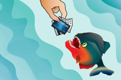 Datu zivs